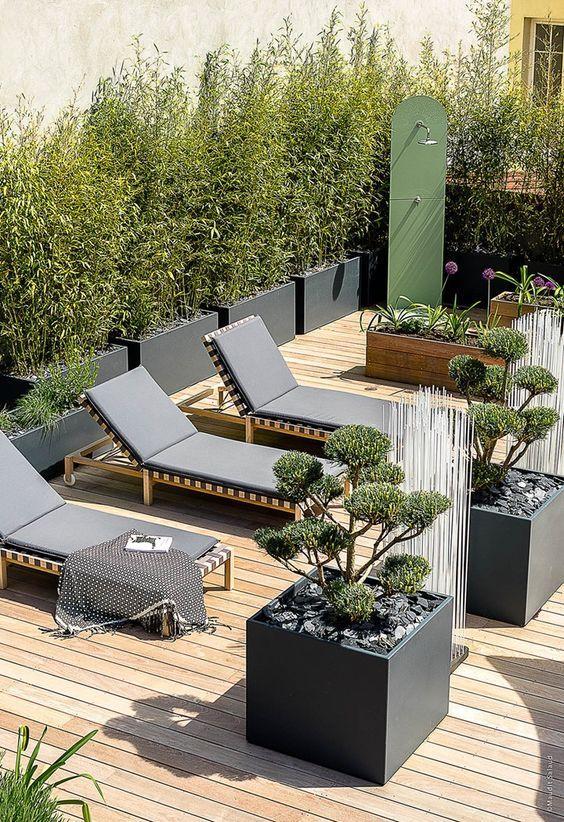 Vườn trên mái
