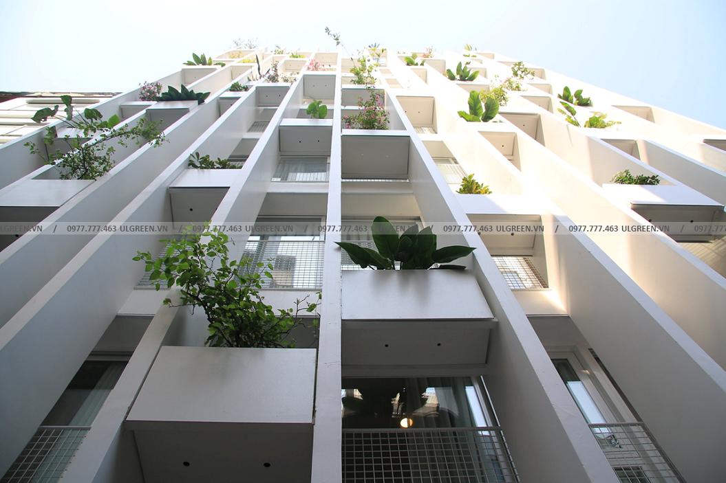 Dự án Chung cư Đào Tấn