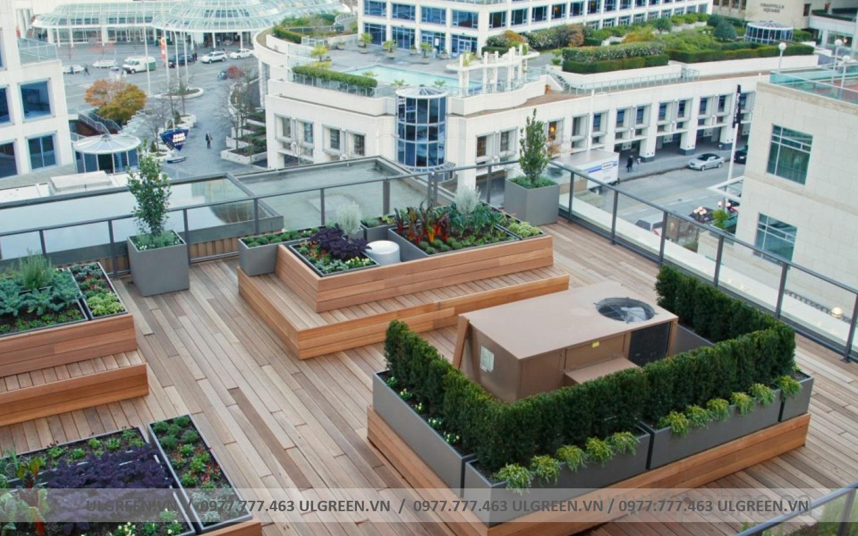 Vườn trên mái 3