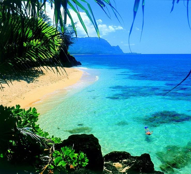 Lễ hội Hawaii