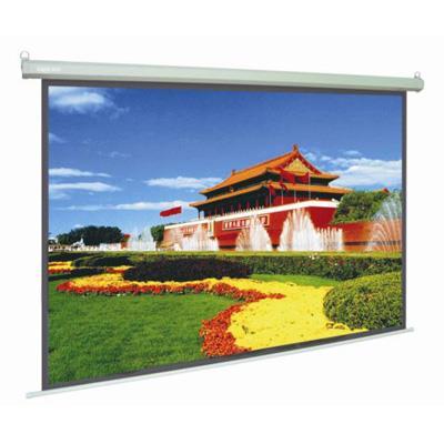 Màn chiếu điện Herin 120x120 inch (170inch)