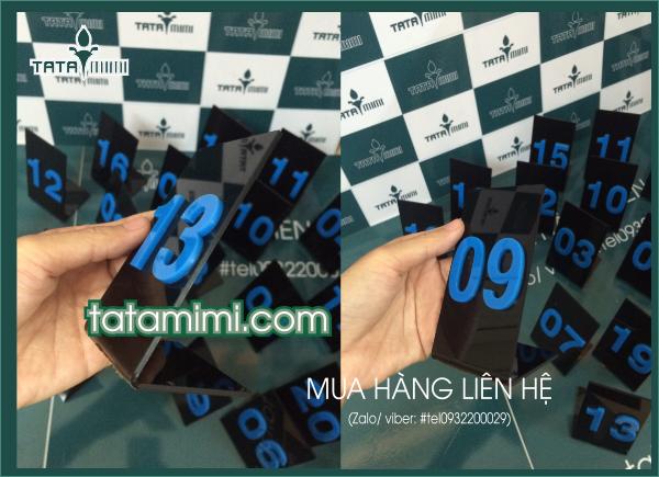 Biển số bàn Mica đèn số xanh 5x10 cm