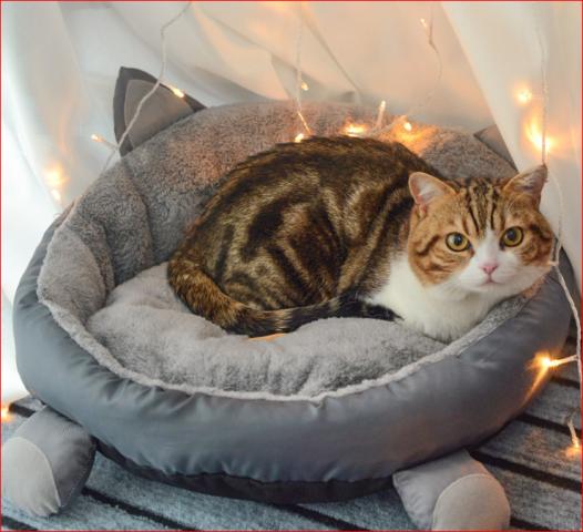 Nệm ngủ ORIKIT dành cho chó mèo NOBI561C