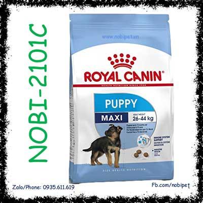Royal Canin Shn Maxi Puppy 1kg Thức Ăn Hạt Cho Chó 2 - 15 Tháng Tuổi