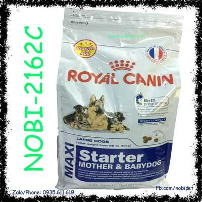 Royal Canin Maxi Starter Mother & Babydog 4kg Thức Ăn Cho Chó Mẹ Và Con