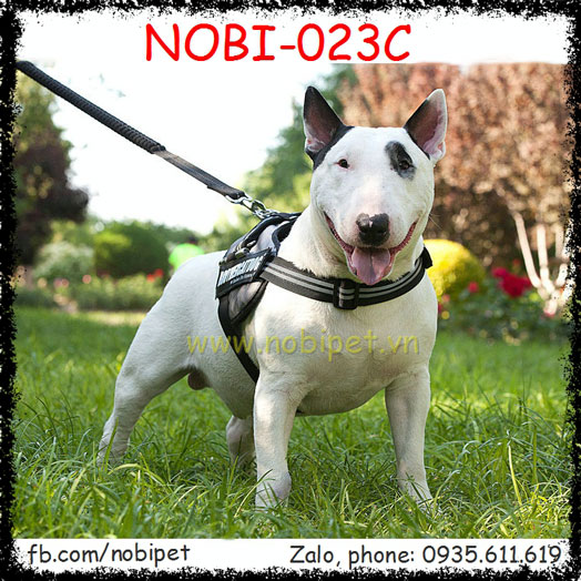 Đai Yếm Brotherdog Vòng Đeo Cổ Cho Chó Lớn Nobi-023C