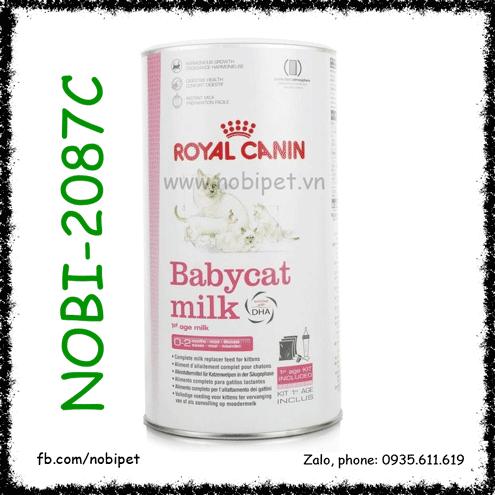 Sữa Royal Canin Baby Cat Milk 300gr Cho Mèo Con Dưới 2 Tháng Tuổi