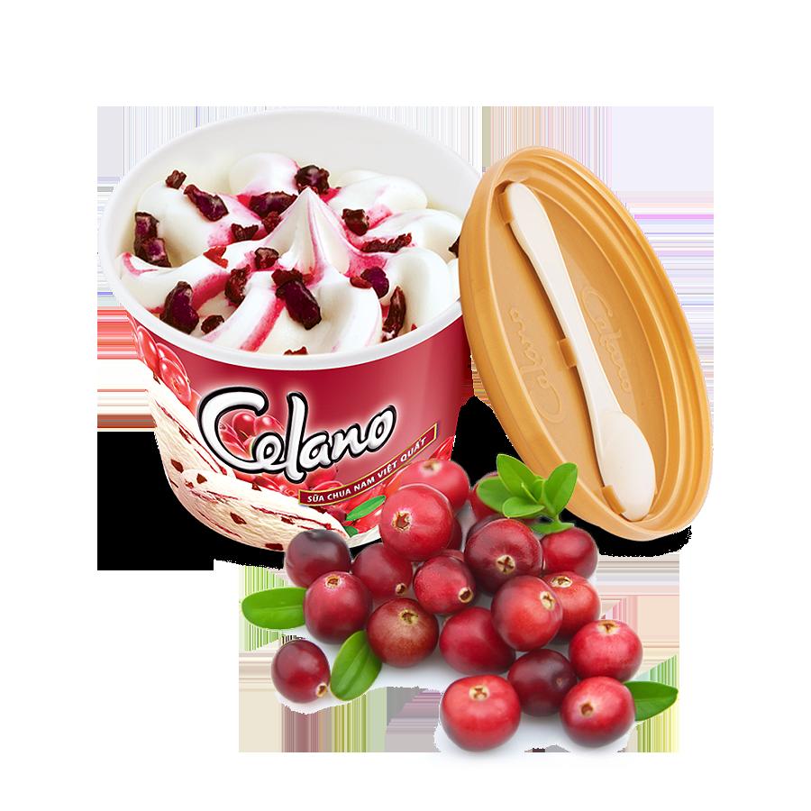 Kem ly cao cấp Sữa chua Nam việt quất Celano Hộp 125ml