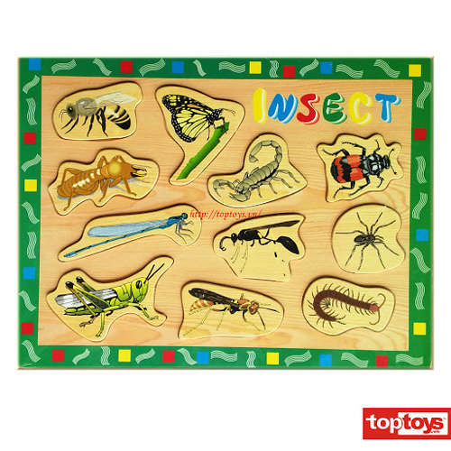 Bảng nhận hình côn trùng SLD28