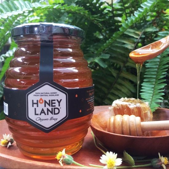 Mật ong hoa Xuyến Chi (Rừng núi Tây Bắc) 500 Gram