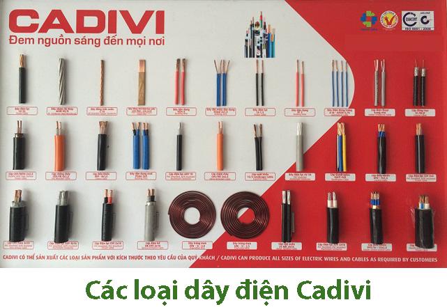 Bạn có biết dây điện Cadivi có mấy loại? | Thuận Phong