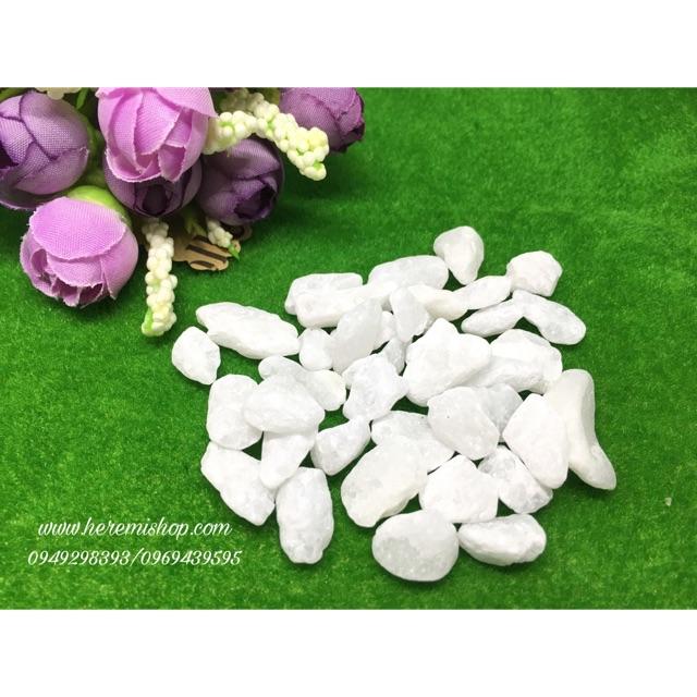 Sỏi trắng (100g) loại 1cm trang trí/terrarium