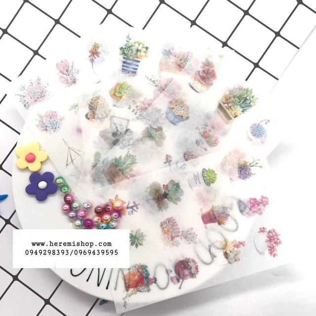 Set 6 tấm Washi sticker xương rồng xinh xắn