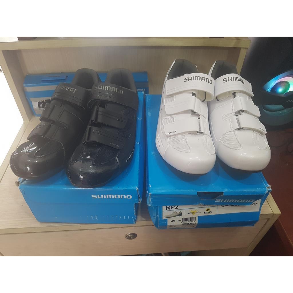 Giày can Shimano ( hàng có sẵn )