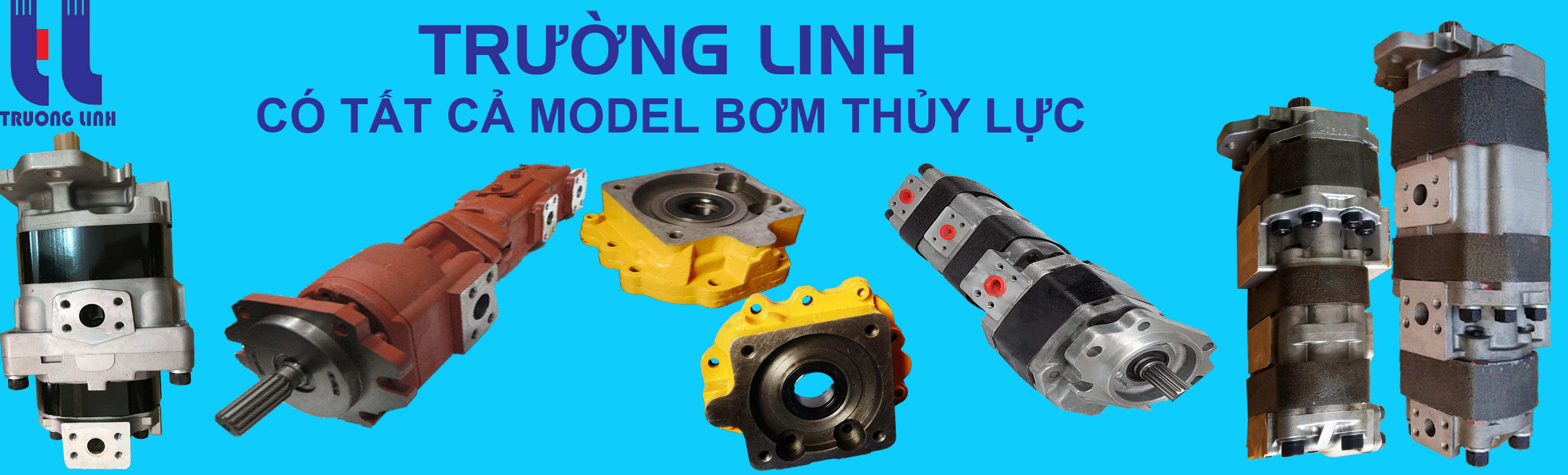 Forklift Hydraulic parts