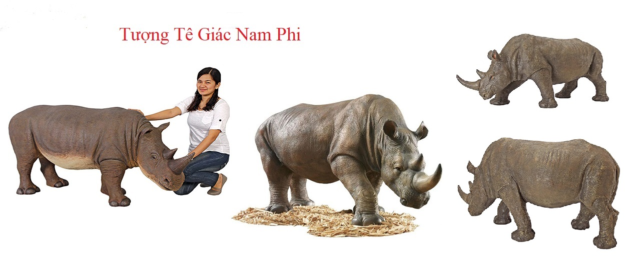 tuong-te-giac-nam-phi-mon-qua-that-khac-biet-size-lon