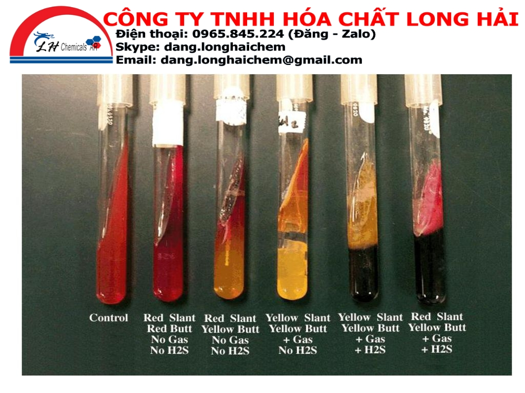 Triple sugar iron agar (TSI) (Merck) | 103915