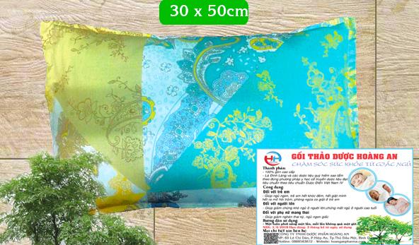 Gối Đinh Lăng Hoàng An size 3 ( NGƯỜI LỚN)