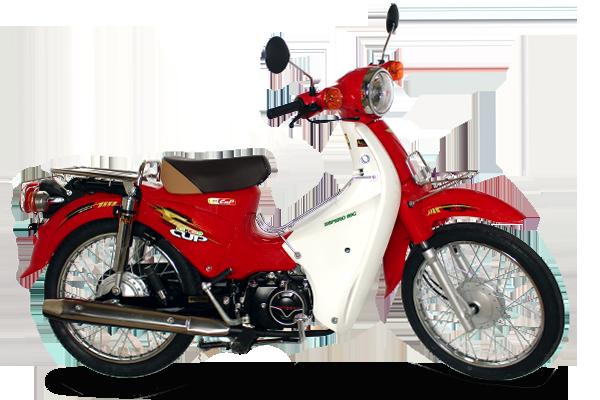 xe-may-50cc-cub-81-detech-50cc