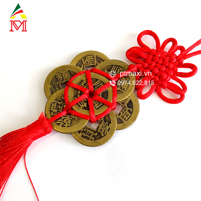 dong-tien-dong-xu-may-man-hinh-hoa-mai-6-dong-phong-thuy-maxi-12.jpg (690×690)