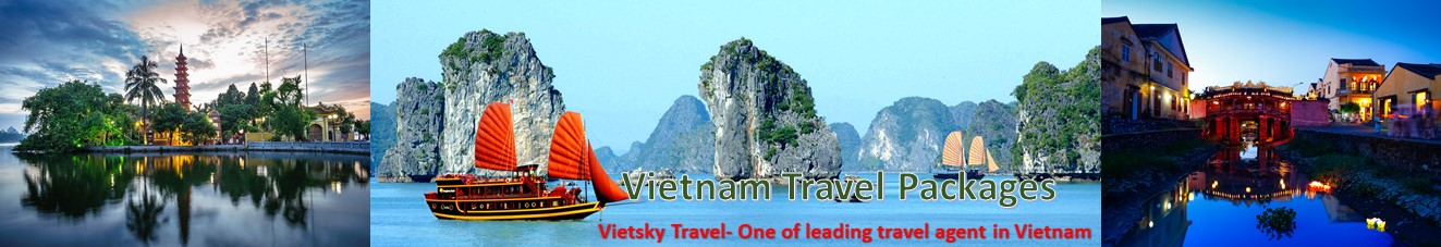 VIETSKY TRAVEL CONTACT INFORMATION