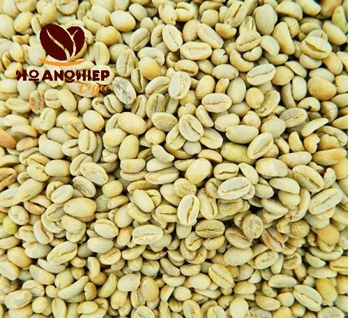 ca-phe-nhan-arabica-cau-dat-green-beans-moka