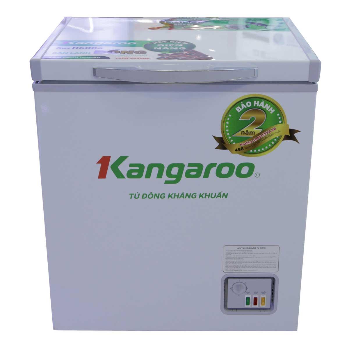 Tủ đông kháng khuẩn Kangaroo KG168NC1