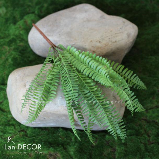 Bụi dương xỉ Ba Tư trang trí LanDecor (35cm) - HC1044