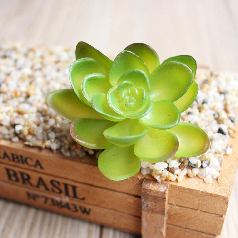 Hoa sen đá - HC729