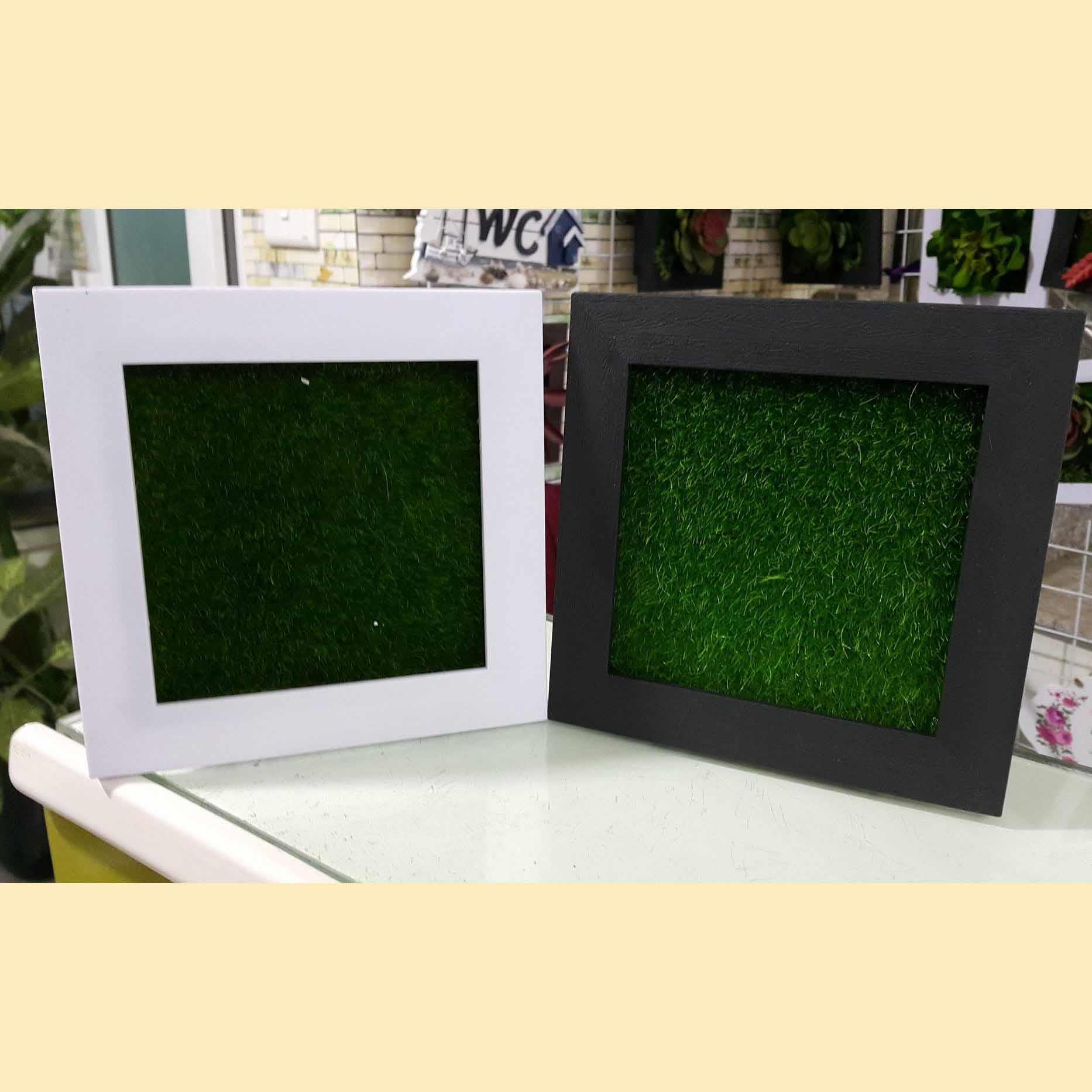 Khung làm tranh cây size 15*15cm (đã bao gồm cỏ) - KTC001