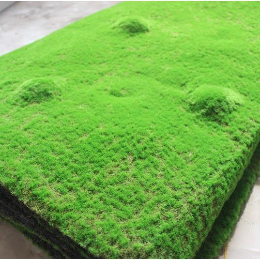 Tấm thảm rêu - TC168