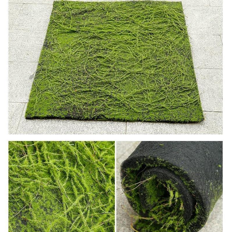 Tấm thảm rêu nhân tạo - TC151