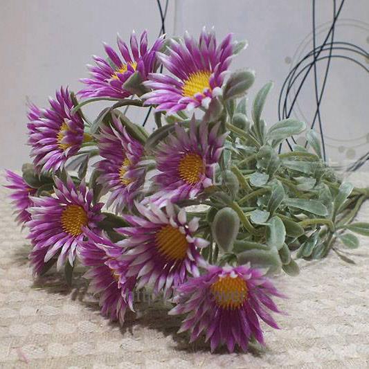 Hoa cúc - HC795