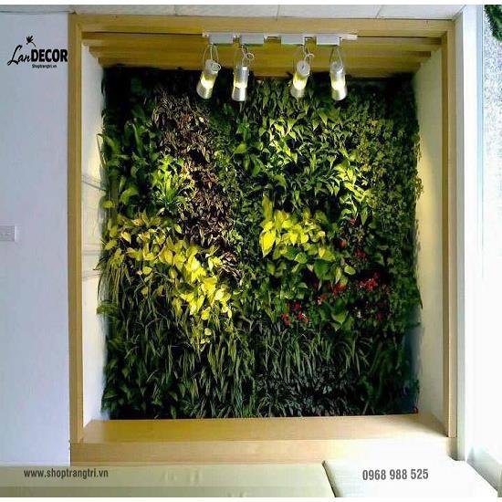 Tường cây lá giả - TC016