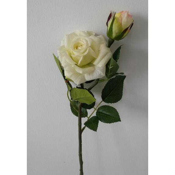Hoa hồng - HC797