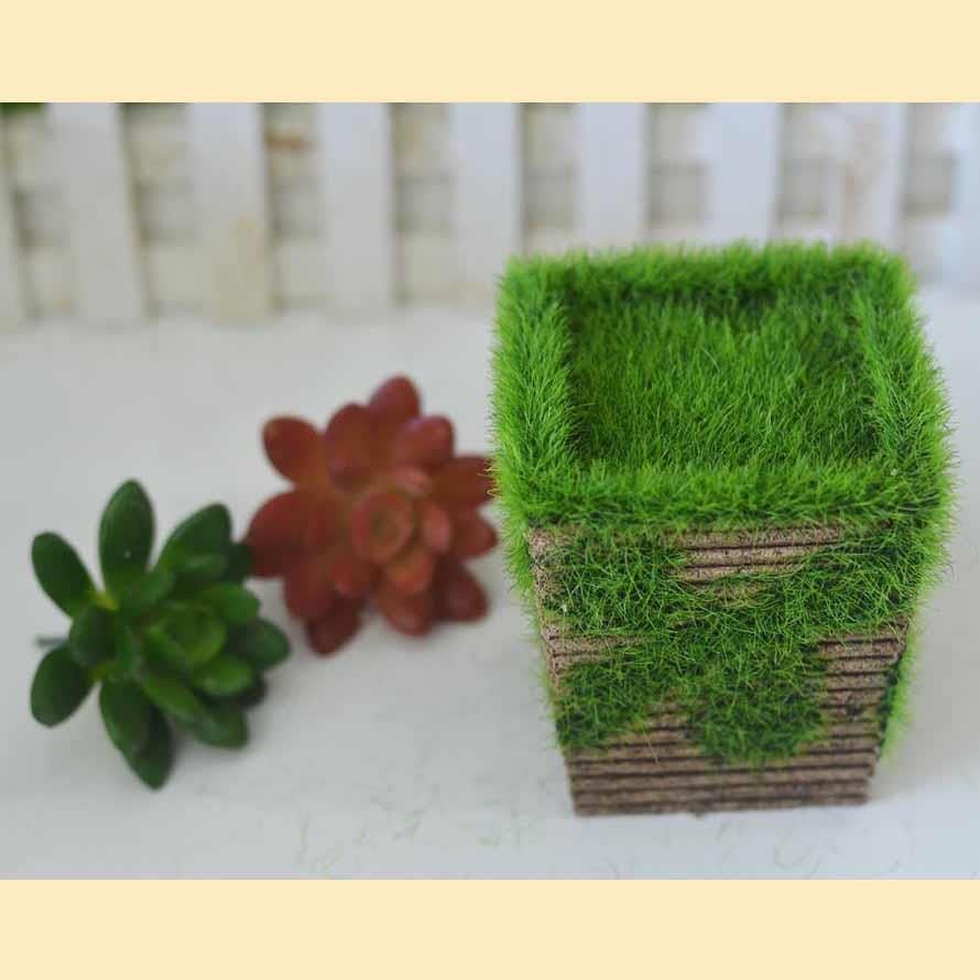 Chậu cỏ vuông cỡ nhỏ - G013