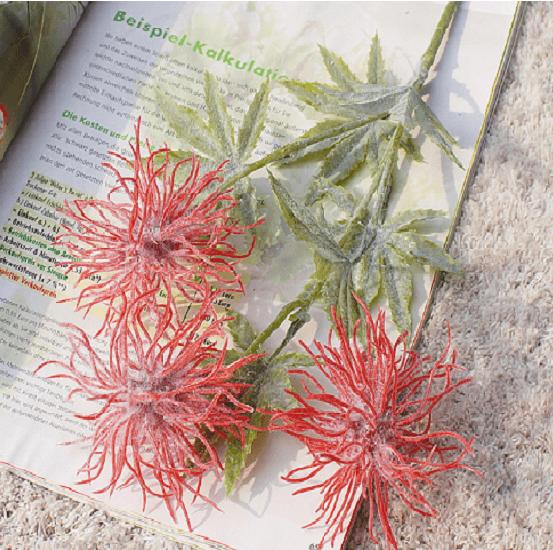 Hoa nhím biển - HC900
