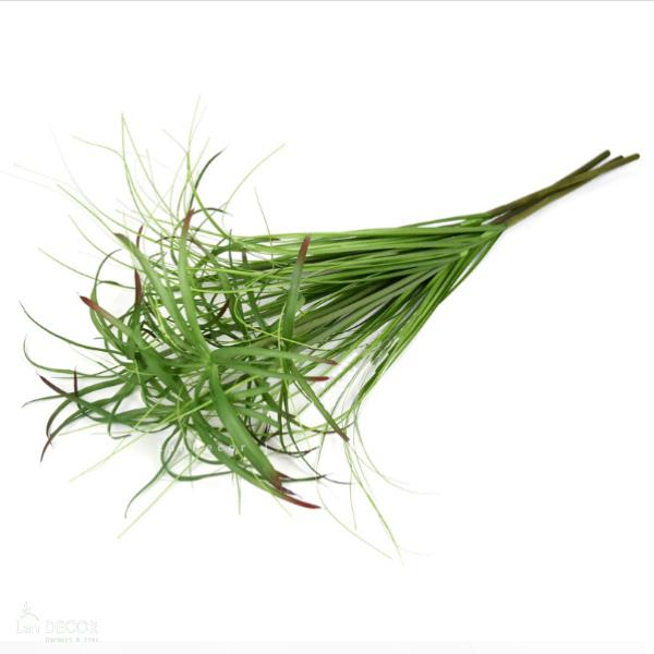 Cây cỏ sậy - HC999