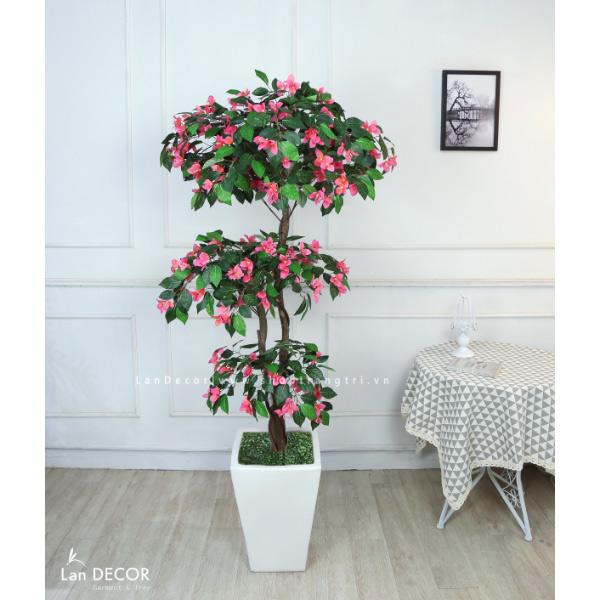 Cây hoa Đỗ Quyên 165cm - LC2819