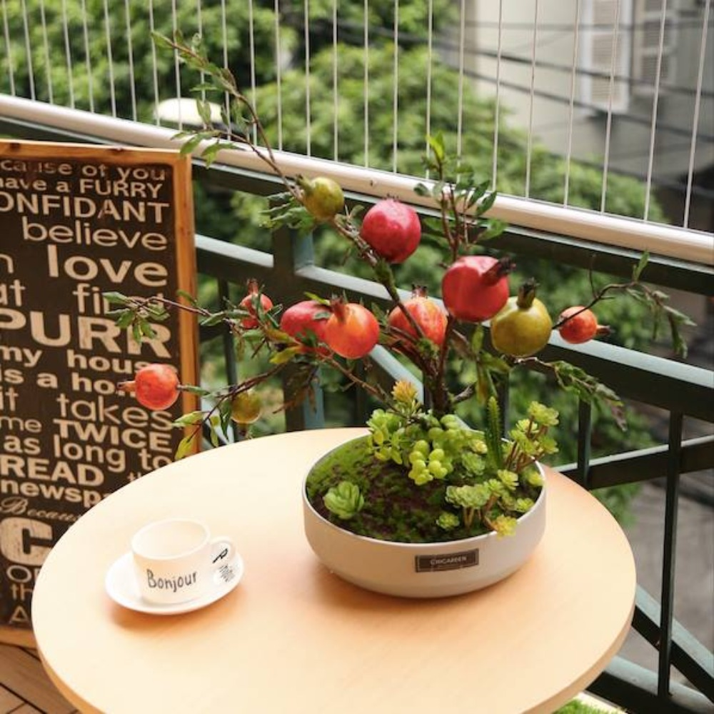 Chậu lựu bonsai - CC018