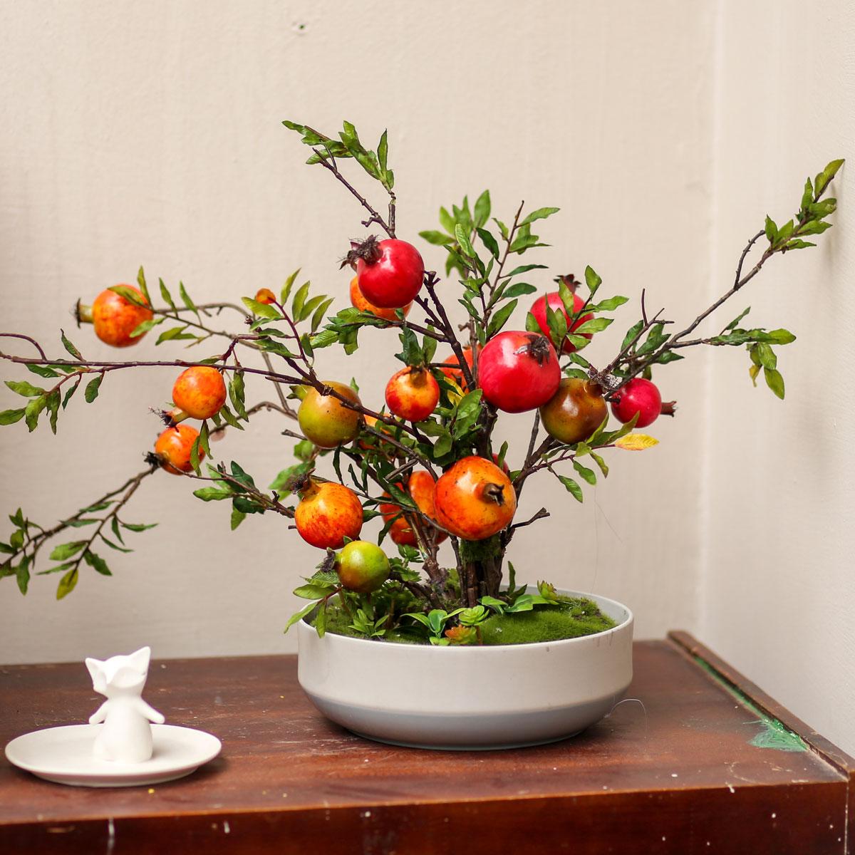 Chậu lựu bonsai - CC085