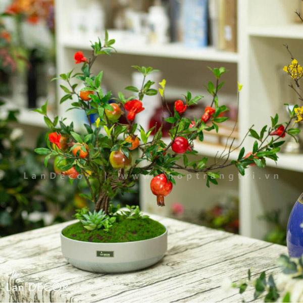 Chậu lựu bonsai để bàn trang trí Lan Decor - CC044