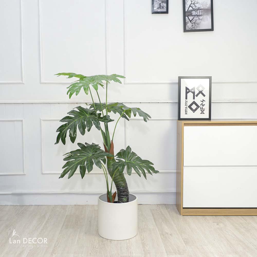 CÂY LÁ XẺ ĐU ĐỦ(115cm) - LC3036