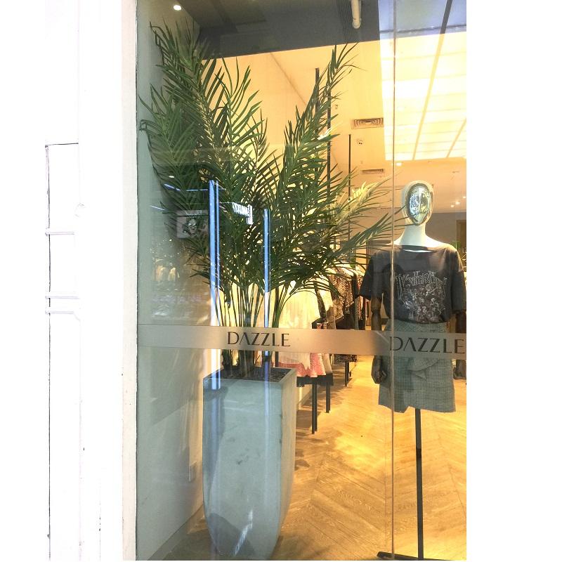 Cây dừa trang trí cửa hàng thời trang