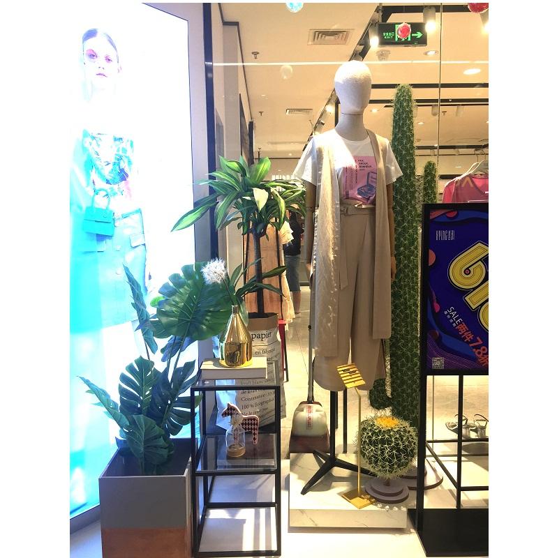 Cây cảnh trang trí shop quần áo sang trọng