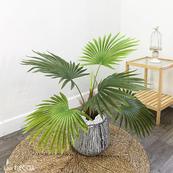 Cây cọ trang trí phong cách nhiệt đới hiện đại Lan Decor (70cm) - LC2895