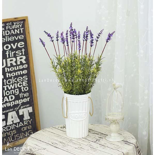 Chậu cây lavender để bàn, trang trí nhà đẹp Lan Decor - CC315