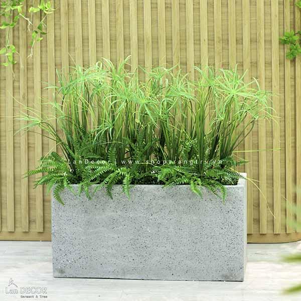 Bồn cỏ sậy trang trí phòng khách, ban công đẹp Lan Decor - BC048