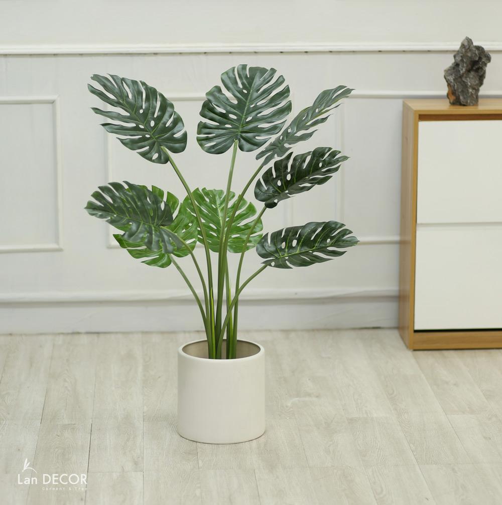 Cây lá xẻ cây monstera đẹp trang trí nhà (90cm) - LC3023