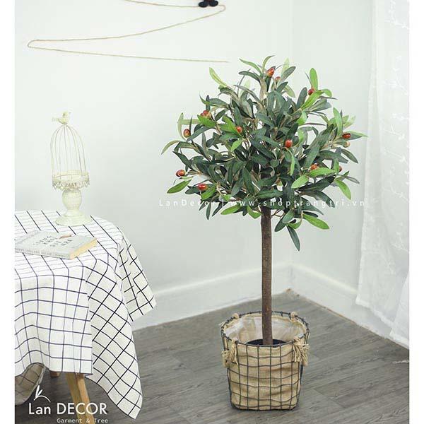 Cây Oliu trang trí phong cách Bắc Âu Lan Decor (90cm) - LC2715